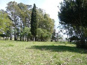 Chácara à venda em Colonia, Uruguay