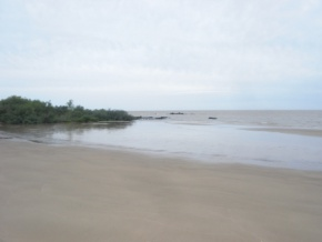 Farm for Sale in Colonia, Uruguay, with 1111 meters of coast