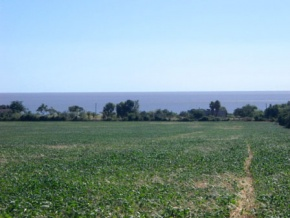 Farm for sale in Colonia, Uruguay