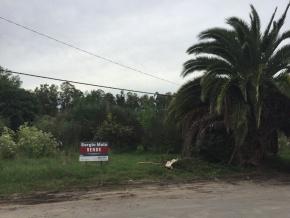 Terreno en venta de 2500 m2 en Colonia del Sacramento, Uruguay