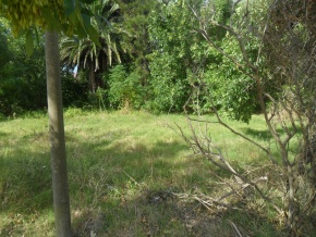 Land for sale in Colonia on the promenade, ideal for building project