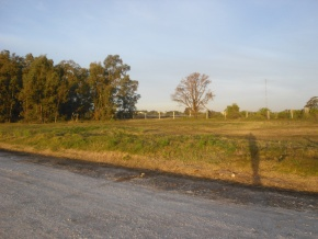 Investment opportunity: lot for sale in Real de San Carlos Village & Golf Club, Colonia, Uruguay