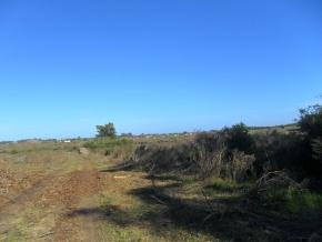 Campo turístico forestal con playa privada en venta en Uruguay