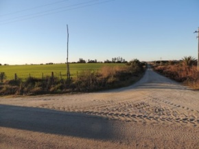 Great Field for sale with agricultural purposes in Colonia Española, Colonia