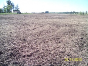 Enhanced Farming/Cattle breeding field for sale in Florida, Uruguay