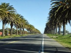 Camino de Palmeras Condo-Aparts, Colonia del Sacramento, New sale